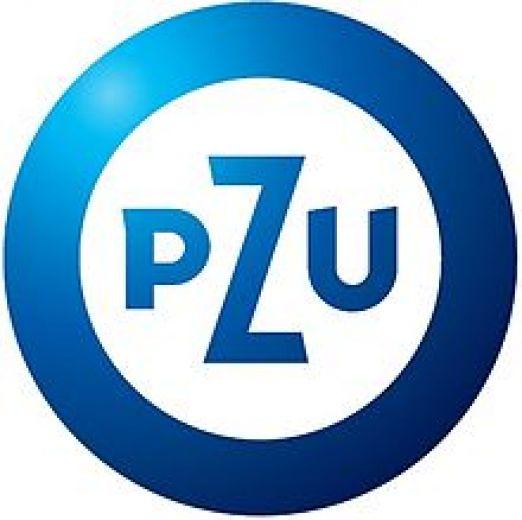 Pzu_logo_big